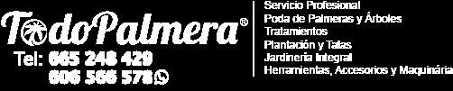 Todo Palmera Logo